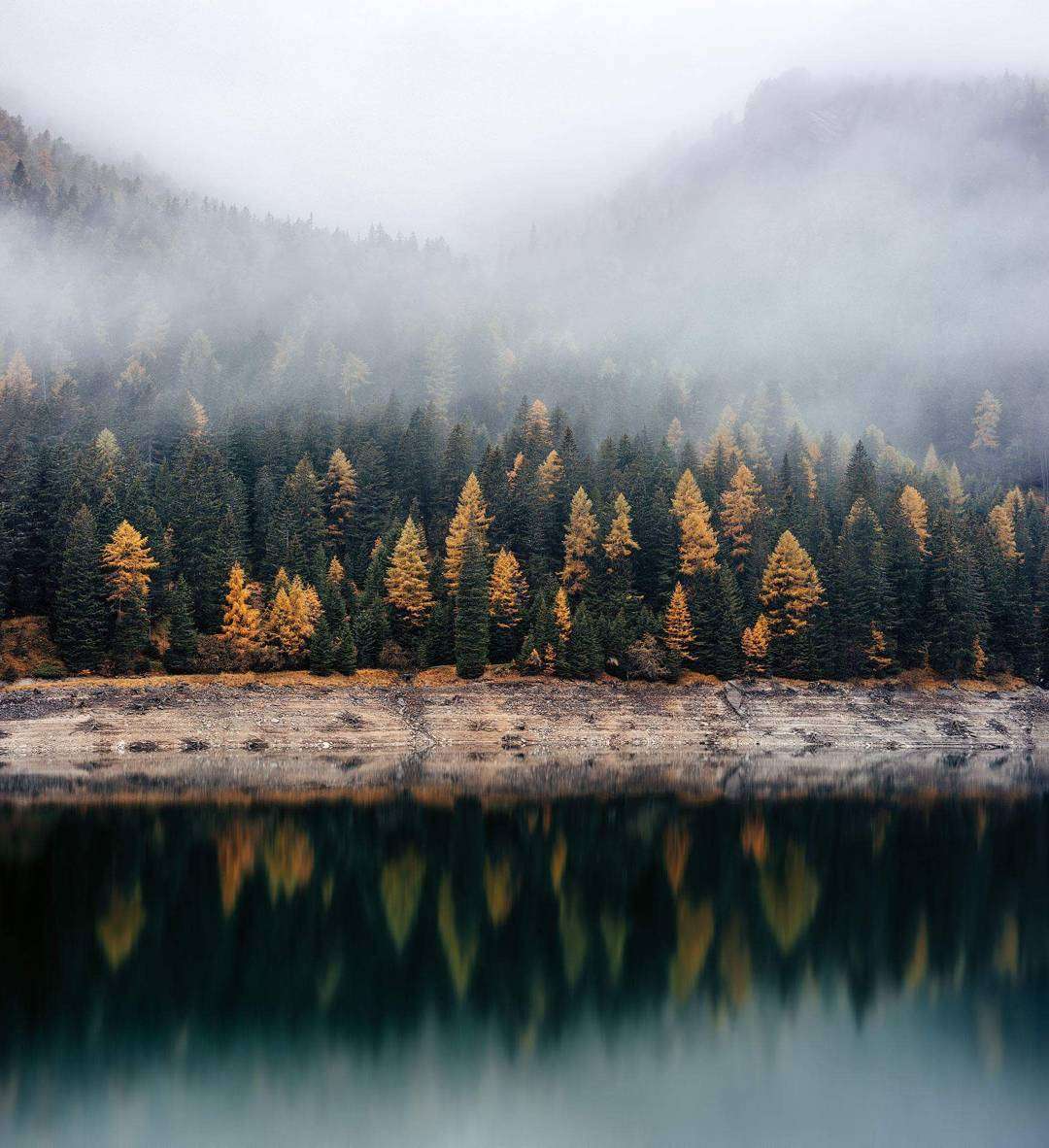 misty alpine forest reflecting in mountain lake